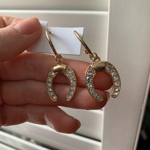 Jewelry - Horse shoe good luck earrings